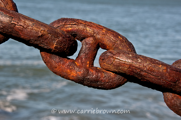 Carrie Brown | Rusty chain